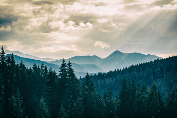 Inspiring Mountains Landscape, beautiful summer day in Tatras, P - Stock Photo - Images
