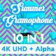 Summer Gramophone Vj Loops Pack - VideoHive Item for Sale