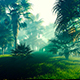 Palm Forest And The Sun - VideoHive Item for Sale