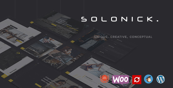Image of Solonick - Personal Portfolio WordPress Theme