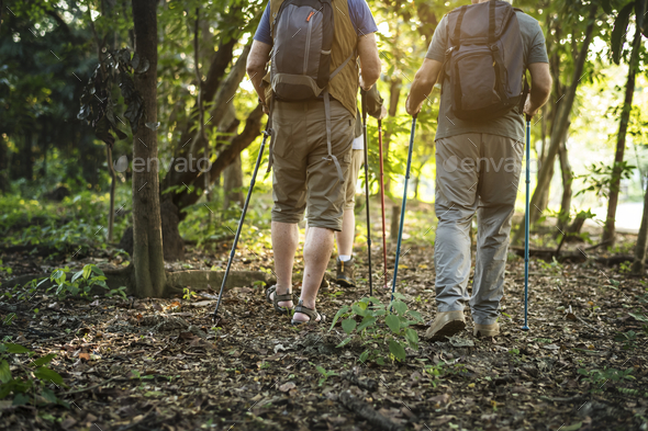 Seniors trekking in a forest - Stock Photo - Images