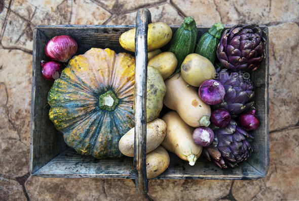 Fresh vegentables and pumkins in a basket - Stock Photo - Images