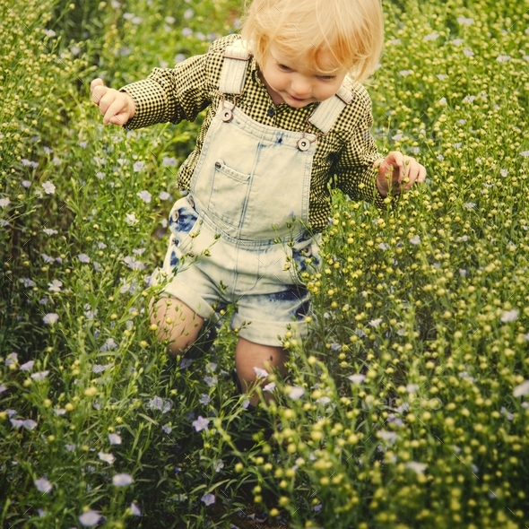 Kid in flower field - Stock Photo - Images