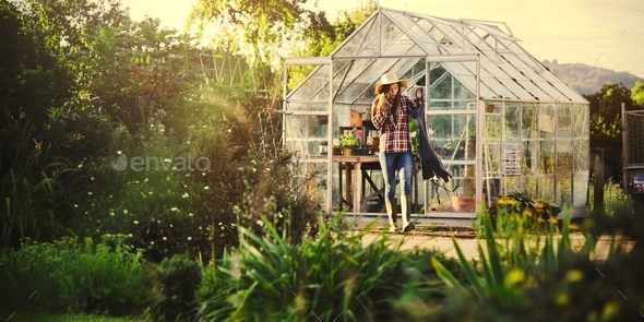 Cultivate Garden Nature Seasonal Growth Concept - Stock Photo - Images