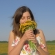 Portrait of Woman In Field With Bouquet of Yellow Dandelion Flowers Sniffing Him - VideoHive Item for Sale