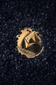 Ethereum gold coin - PhotoDune Item for Sale