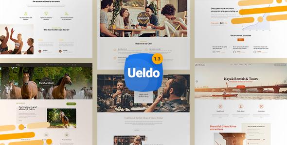 Ueldo - Responsive Multi-Purpose WordPress theme