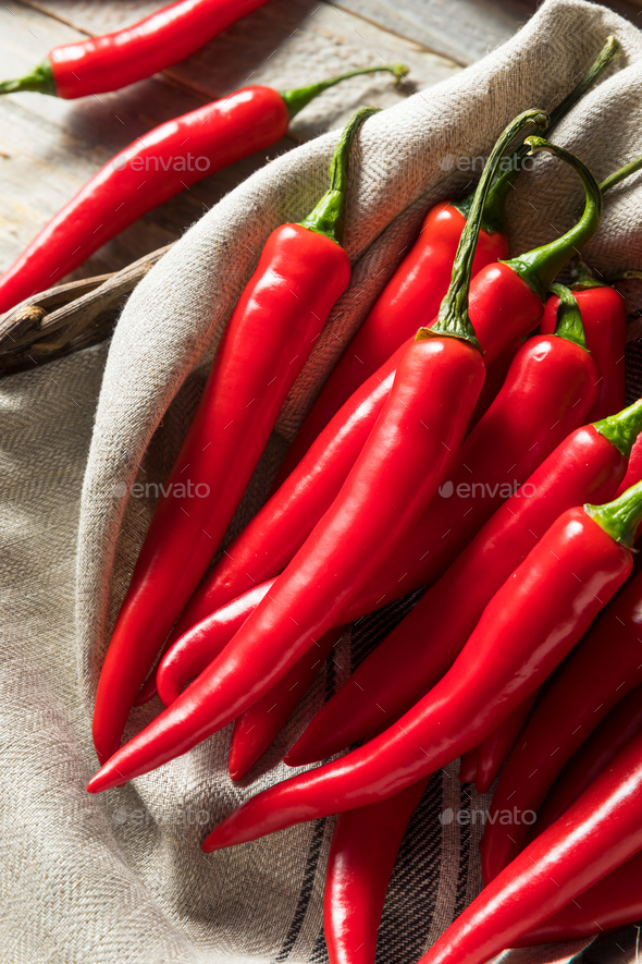 Raw Red Organic Hot Finger Peppers - Stock Photo - Images