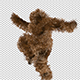 Hairy Jumper Dancer - VideoHive Item for Sale