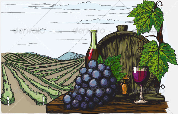 Landscape with views of vineyards - Landscapes Nature
