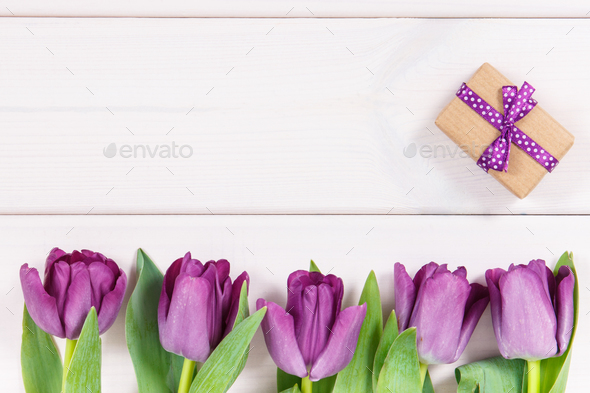 Purple tulips and gift for different occasions, copy space for text on white boards - Stock Photo - Images