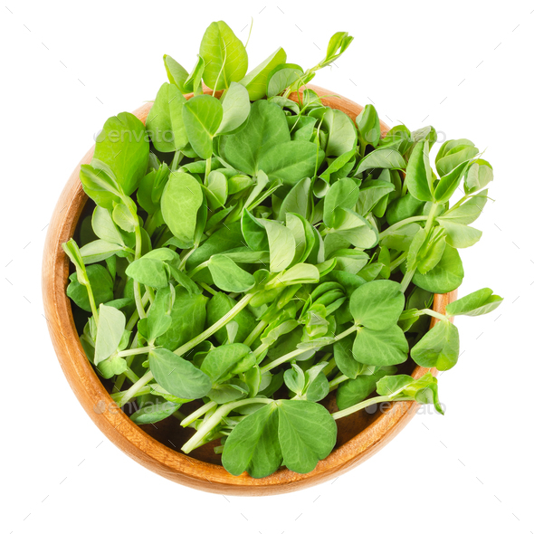 Snow pea microgreen in wooden bowl over white - Stock Photo - Images