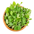 Snow pea microgreen in wooden bowl over white - PhotoDune Item for Sale