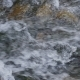 Waves, Spray and Foam, River Katun in Altai Mountains. Siberia, Russia - VideoHive Item for Sale
