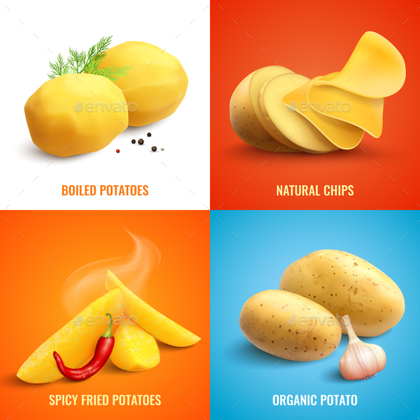 Potato Realistic 2x2 Design Concept - Food Objects