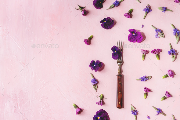 Purple edible flowers - Stock Photo - Images