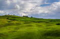 Tuscan meadow - PhotoDune Item for Sale
