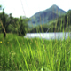 Snowdonia Meadow Pan - VideoHive Item for Sale