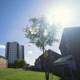 Urban British Council Estate in Summer - VideoHive Item for Sale