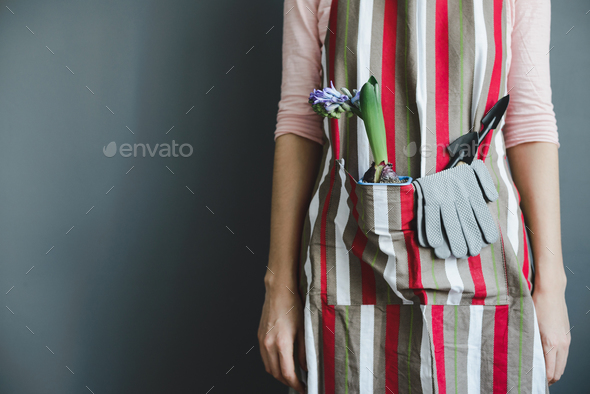 woman stands with hyacinth plant and small shovel - Stock Photo - Images