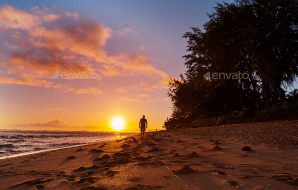 Hawaiian beach - Stock Photo - Images