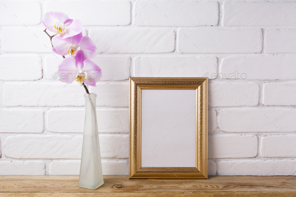 Gold decorated frame mockup with tender pink orchid - Stock Photo - Images