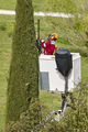 Equiped worker pruning a tree on a crane. Gardening works - PhotoDune Item for Sale