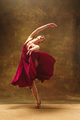Young ballet dancer - Harmonious pretty woman with tutu posing in studio - - PhotoDune Item for Sale