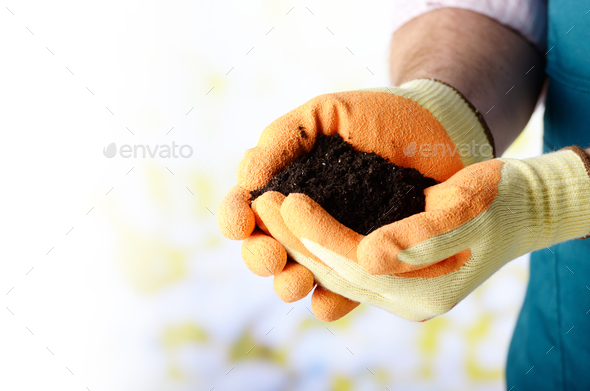 Farmer shows soil in his hands weared in gloves - Stock Photo - Images