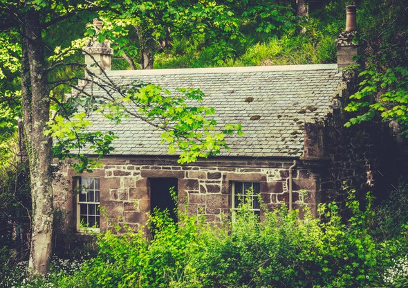 Cottage In The Woods - Stock Photo - Images