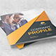 Profile Company Brochure - GraphicRiver Item for Sale