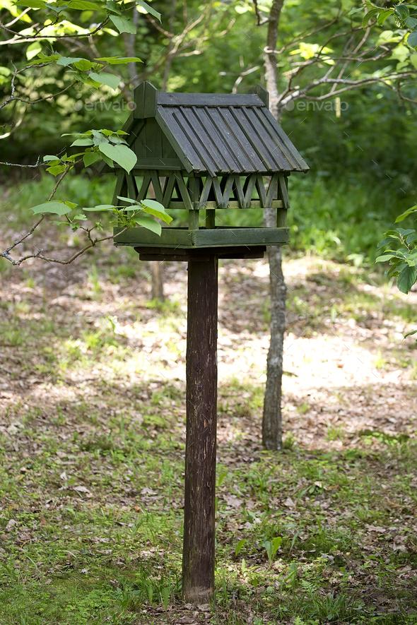 Bird feeder  - Stock Photo - Images