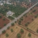 Aerial View of Old Olive Trees and Villas, Olive Plantation in South Italy - VideoHive Item for Sale