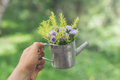 Hand holding decorate flowers in pot - PhotoDune Item for Sale