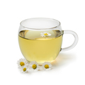 Cup of healthy daisy tea - PhotoDune Item for Sale