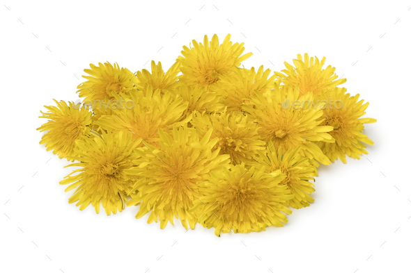 Heap of fresh yellow dandelion flowers - Stock Photo - Images