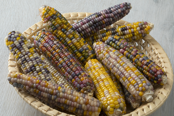 Basket with colorful gem glass corn on cob - Stock Photo - Images