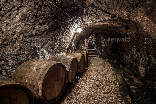 Wine cellar - Stock Photo - Images