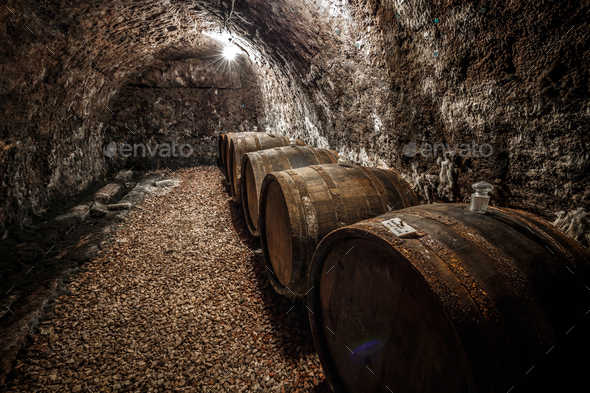 Wine barrels row - Stock Photo - Images