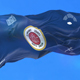 Flag of Northamerican County of Alamance - VideoHive Item for Sale