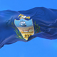 Flag of Allegheny County - VideoHive Item for Sale
