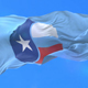 Flag of Collin County - VideoHive Item for Sale