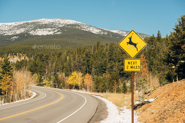 Deer crossing sign on highway at autumn - Stock Photo - Images