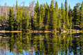 Nymph Lake, Rocky Mountains, Colorado, USA. - PhotoDune Item for Sale