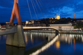 Famous view of Lyon by night. - PhotoDune Item for Sale