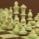 White Chess Pieces Disappear From the Chessboard - VideoHive Item for Sale