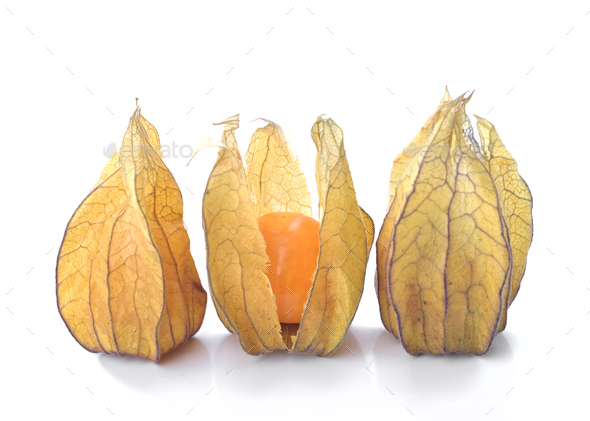 Exotic fruit physalis isolated on white background - Stock Photo - Images