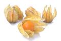 Exotic fruit physalis isolated on white background - PhotoDune Item for Sale
