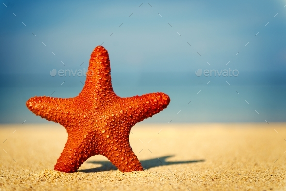 Summer holiday - Stock Photo - Images