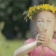 Portrait of a Funny Little Girl in the Woods. A Child Without Front Teeth Blows on Dry Dandelions - VideoHive Item for Sale